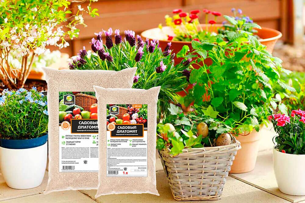 Диатомит для комнатных растений